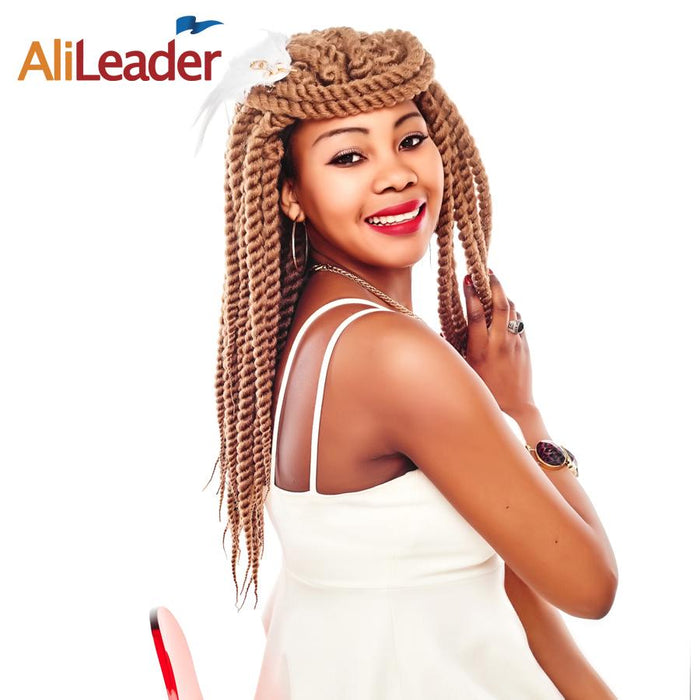 Alileader Havana Twist Crochet Braids Black Blonde Silver Burgundy