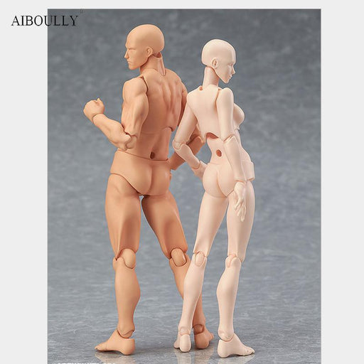 Anime Archetype He She Ferrite Figma Movable Body Kun Body Chan Pvc Action Figure Model Toys Doll-Learning & Education-Douyong toy Store-fusenan-EpicWorldStore.com