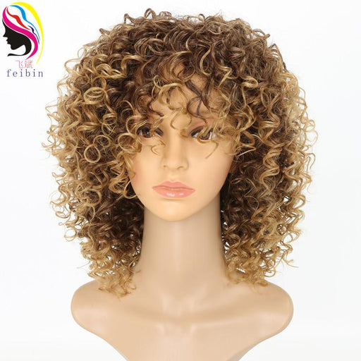 Feibin Kanekalon Afro Wigs For Black Women Kinky Curly Ombre Blonde Nature Black Synthetic Wigs-FB Hair Products Store-1B/30HL-14inches-EpicWorldStore.com
