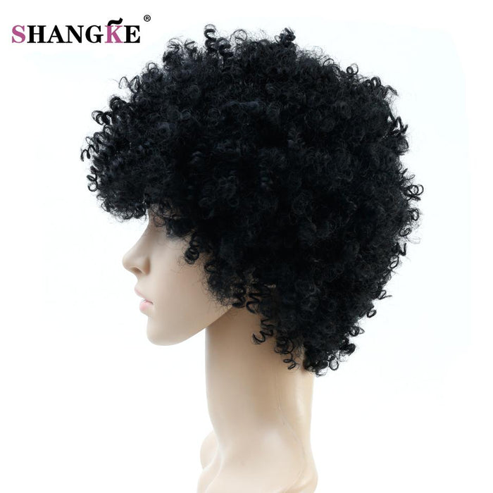 Natural Afro Wig Kinky Curly Wigs For Women Heat Resistant Synthetic Female Wig Short Hair Wigs