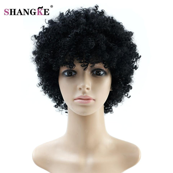 Natural Afro Wig Kinky Curly Wigs For Women Heat Resistant Synthetic Female  Wig Short Hair Wigs 5f3e2cbb2