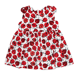 1z 2z 3z ladybug cookie corduroy toddler children clothing boutique richmond virginia jumper dress baby girl