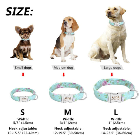 PERSONALIZED ADJUSTABLE NYLON DOG ENGRAVED TAG COLLAR