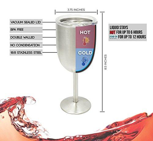 a20000ed323 Double Wall Vacuum Sealed Insulated Wine Glass + Goblet with Splash Proof  Lid