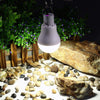 New Solar Outdoor Light