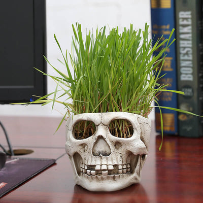 Skull Head Flower Pots