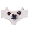 Animal 3D Ears Panties (Various Designs)