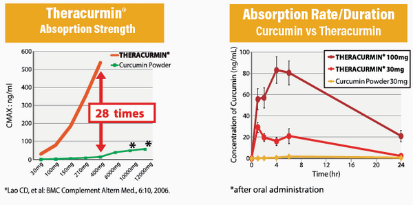 Theracurmin best curcumin absorption rate