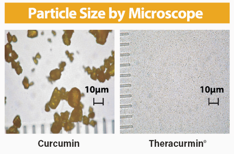 Theracurmin curcumin particle size