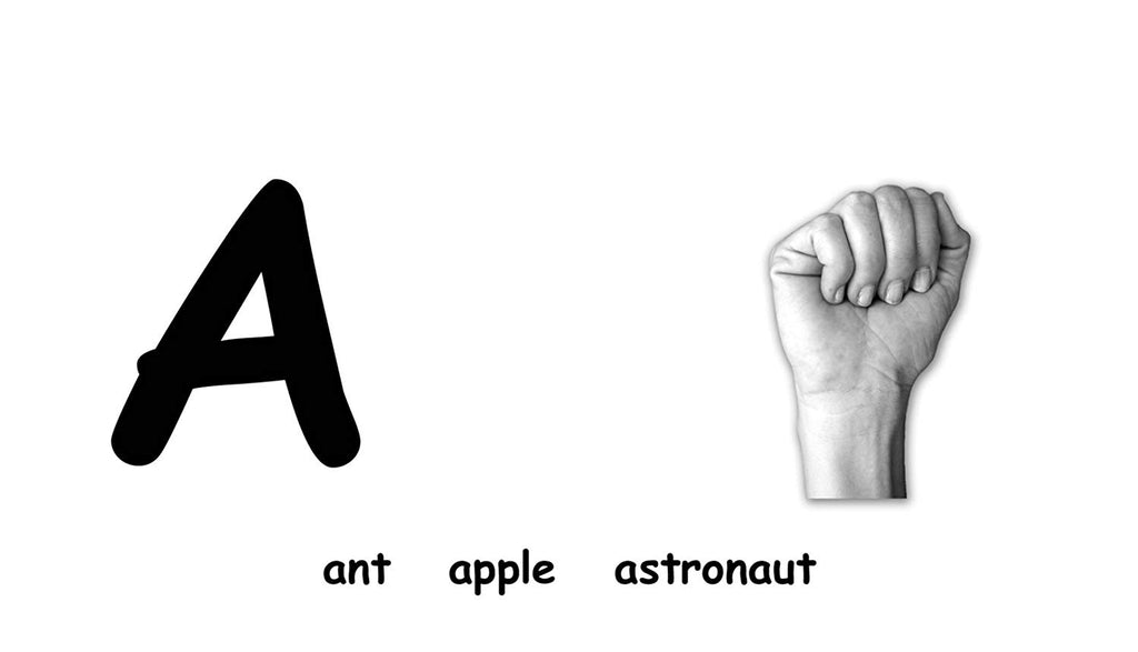 ABC Flash Cards with American Sign Language By the Flash of Brilliance