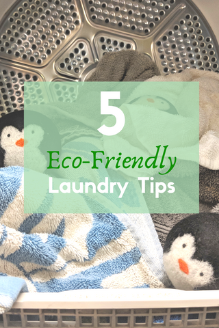 5 Eco-Friendly Laundry Tips
