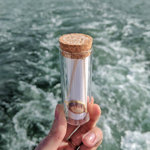 14K Gold Plated Seashell Bracelet in Glass Bottle with Cork by the Ocean