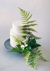 Ferns, Leaves, and Herbs cake