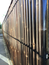 2m - Premium Black Bamboo Fencing Panels / Privacy Screening