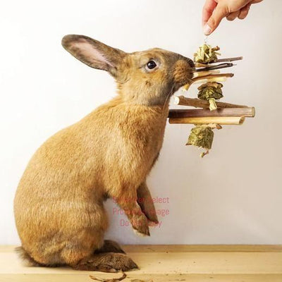 "smallpetselect-uk,Organic 12"" Hay and Twig Mobiles"