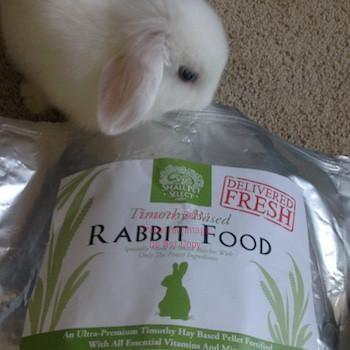 smallpetselect-uk,Premium Rabbit Food Pellets