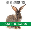The Bunny Starter Pack