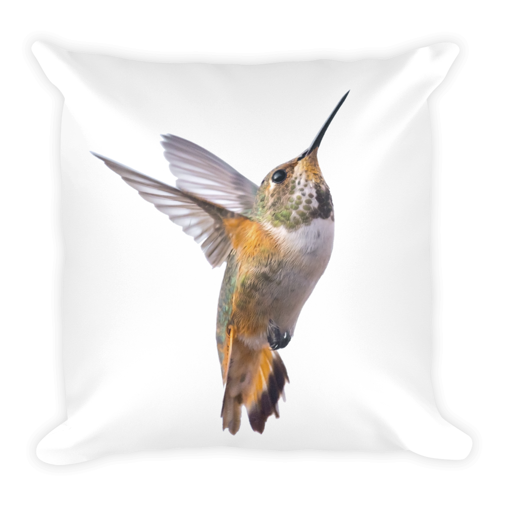 Hummingbird Print Square Pillow
