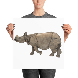 Indian-Rhinoceros Photo paper poster