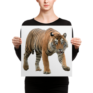 Bengal-Tiger Canvas