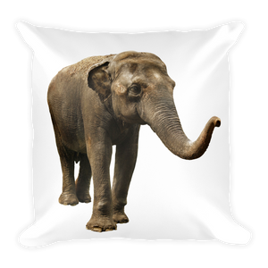 Indian-Elephant Print Square Pillow