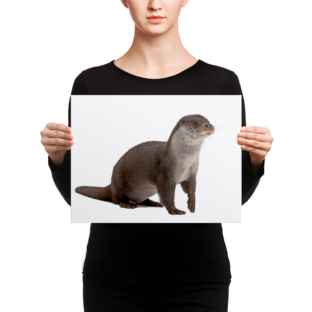European-Otter Canvas