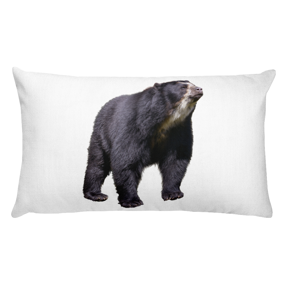 Specticaled-Bear Print Rectangular Pillow