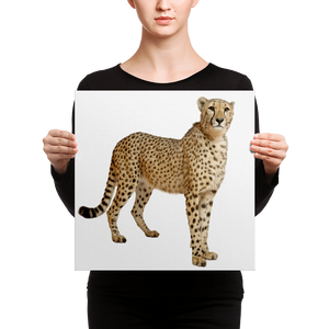 Cheetah Canvas