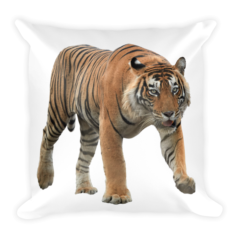 Bengal-Tiger Print Square Pillow