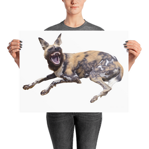 African-Wild-Dog Photo paper poster