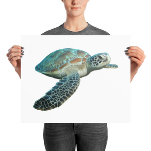 Sea-Turtle Photo paper poster