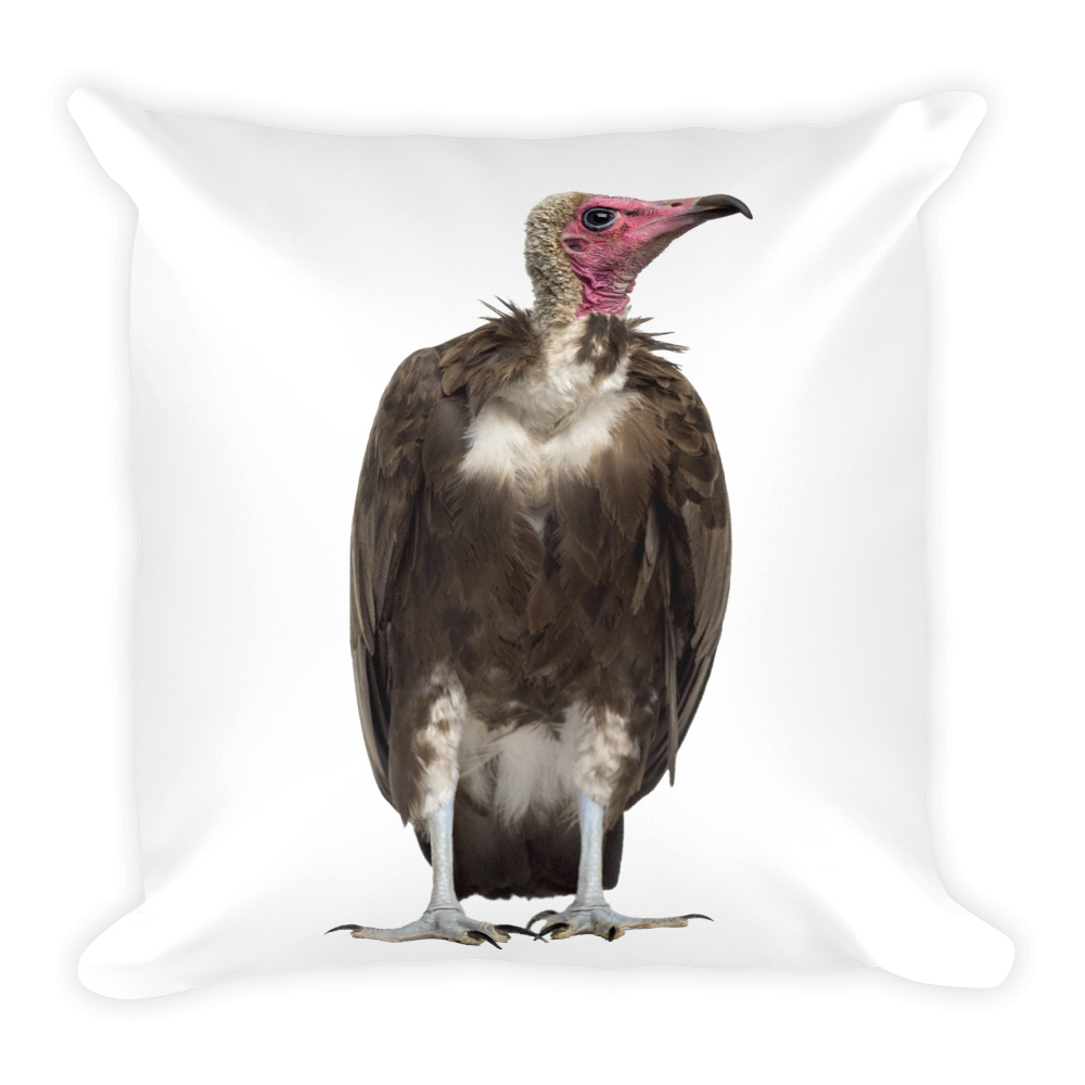 Vulture Print Square Pillow