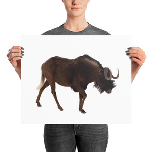 Wilderbeast Photo paper poster