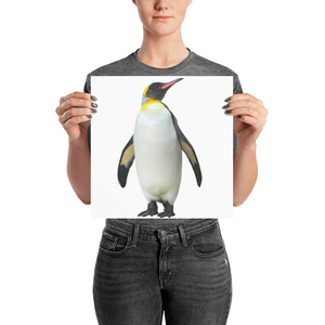 Emperor-Penguin Photo paper poster