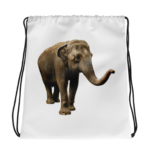 Indian-Elephant Print Drawstring bag