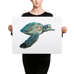 Sea-Turtle- Canvas