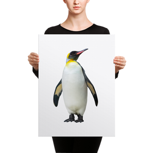 Emperor-Penguin Canvas