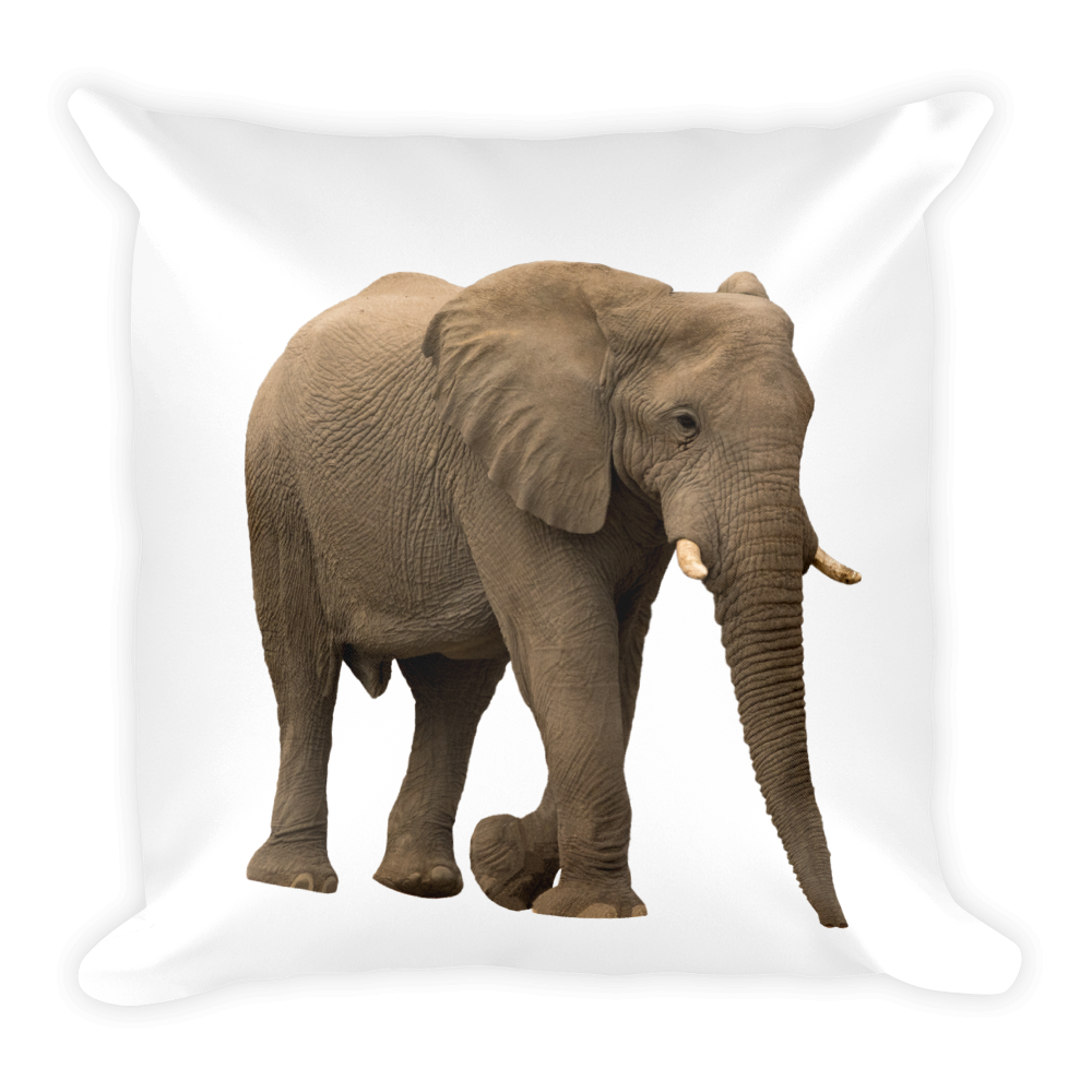 African-Forrest-Elephant Print Square Pillow