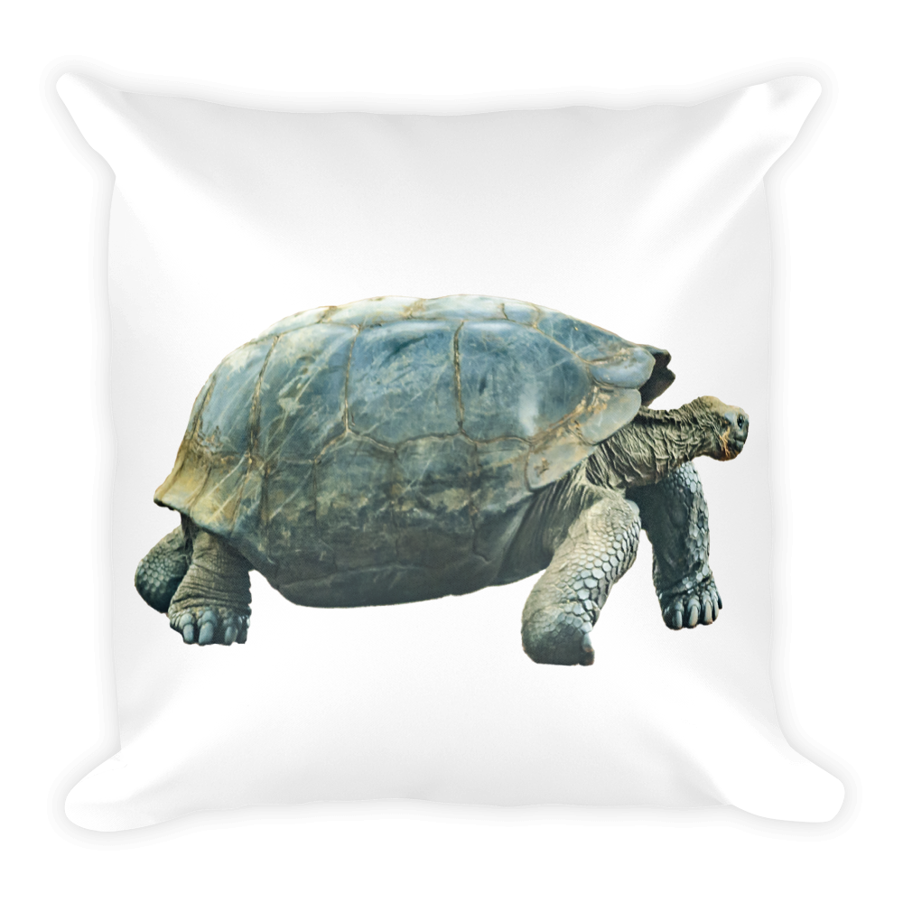 Galapagos-Giant-Turtle Print Square Pillow