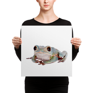 Tarsier-Frog Canvas