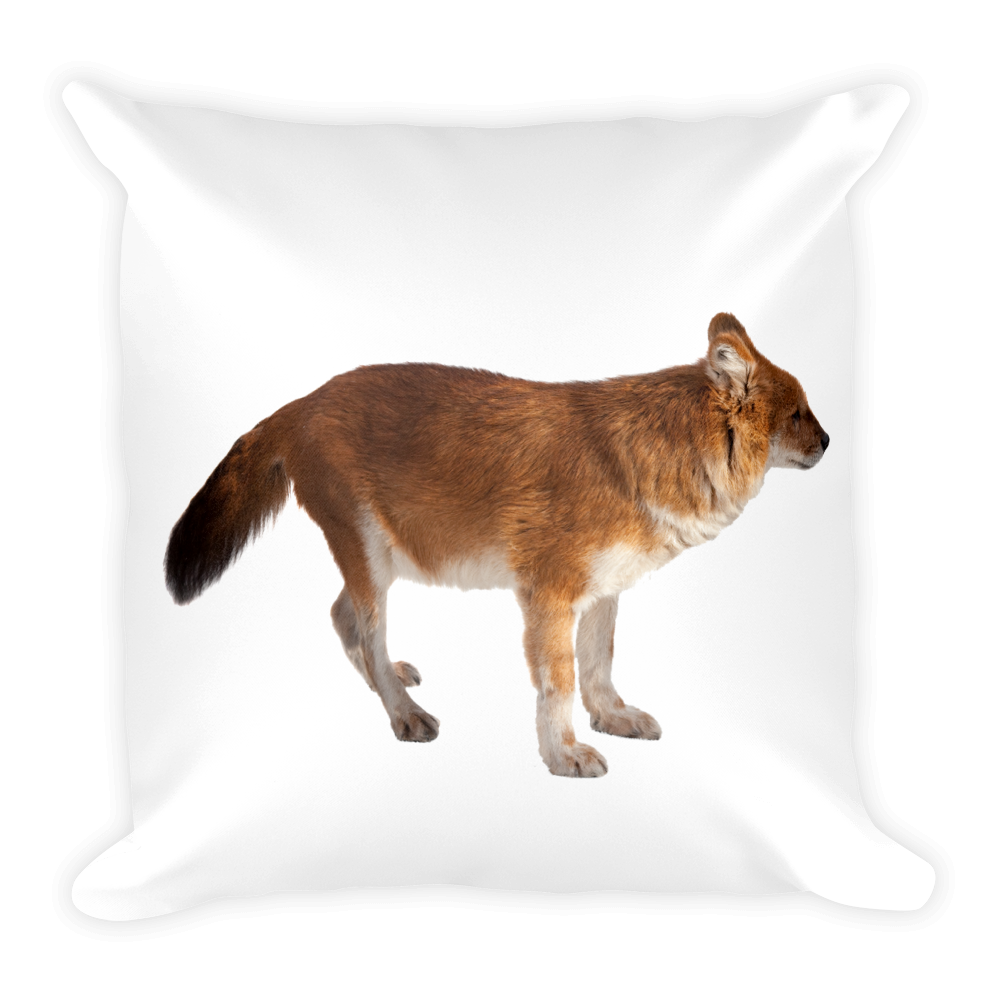 Dhole Print Square Pillow