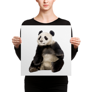Giant-Panda Canvas
