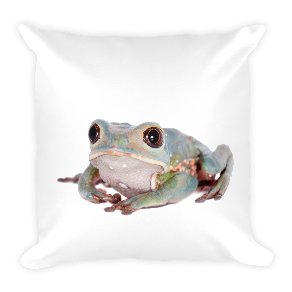 Tarsier-Frog- Print Square Pillow
