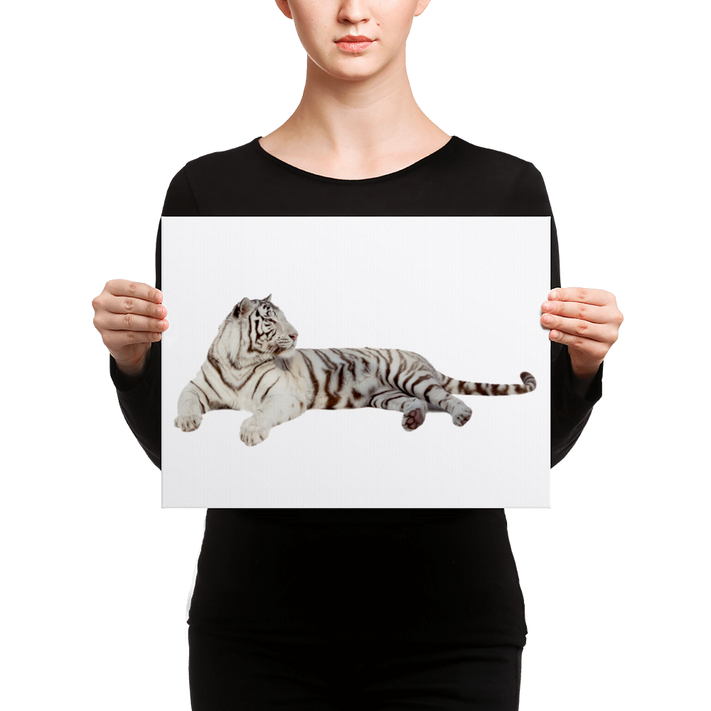 White-Tiger Canvas