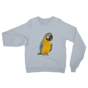 Macaw- print Unisex California Fleece Raglan Sweatshirt