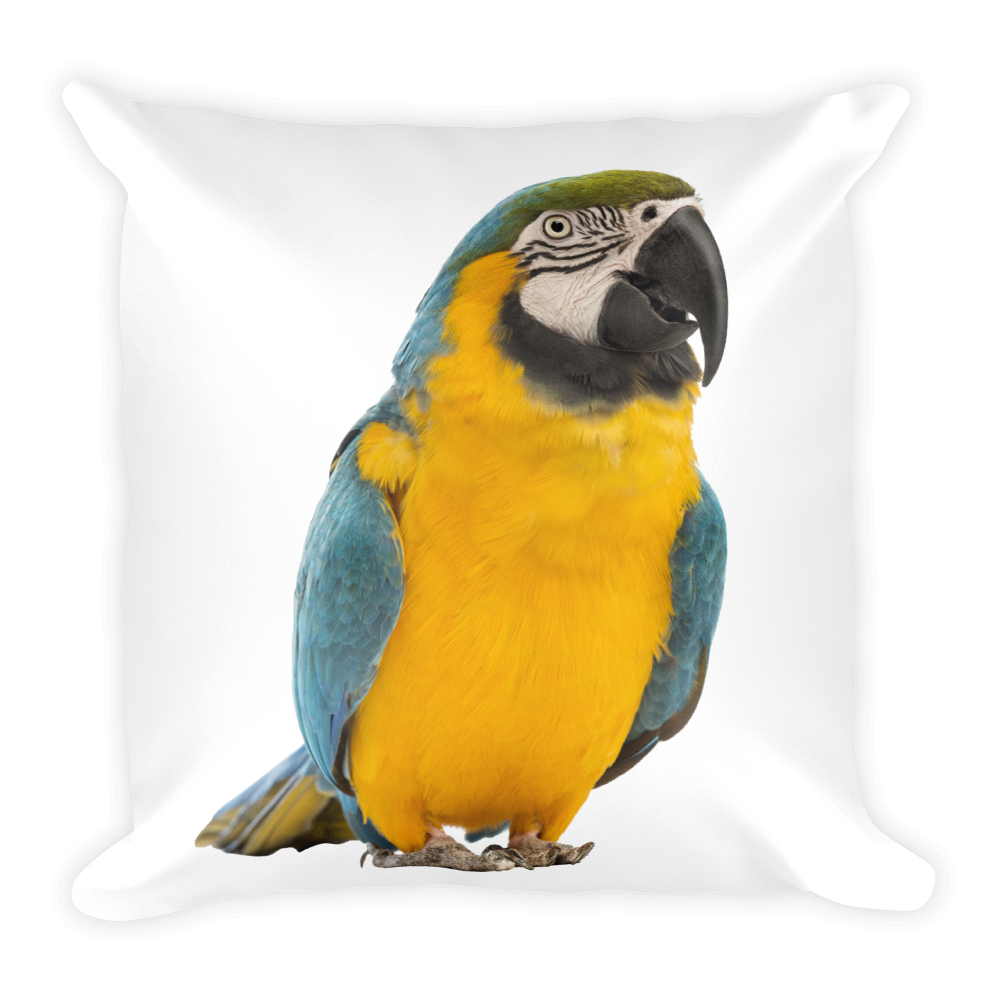Macaw Print Square Pillow