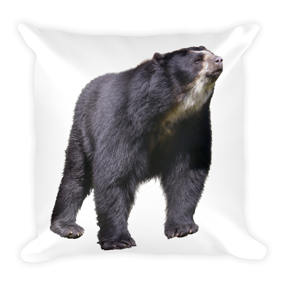 Specticaled-Bear Print Square Pillow
