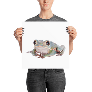 Tarsier-Frog Photo paper poster