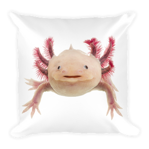 Axolotle Print Square Pillow