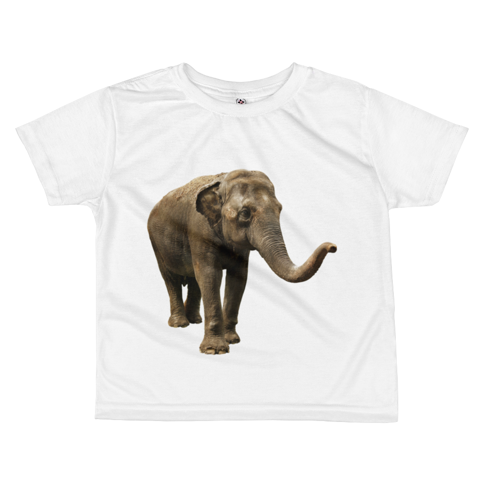 Indian-Elephant- Print All-over kids sublimation T-shirt